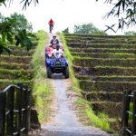 Bali bike tour is one of the top tours to do on your Bali holiday